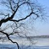 lac gelé, à côté de Hvitträsk