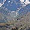 vue sur le Mont Collon (3637m), depuis la cabane des Aiguilles Rouges, à 2810m