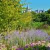 festival international des jardins, château de Chaumont