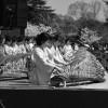 orchestre traditionnel au château Himeji